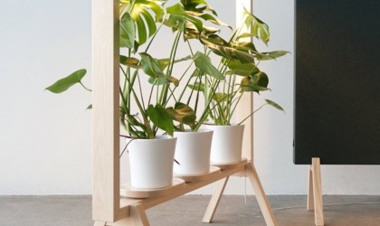 GreenFrame with three potted plants