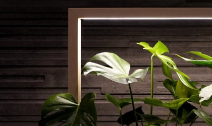 Elegant room divider with lights and plants