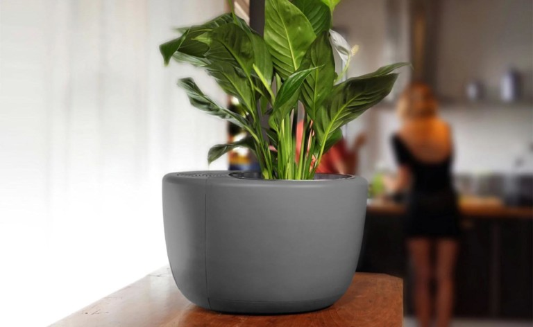 smart home gadgets potted plant air purifier
