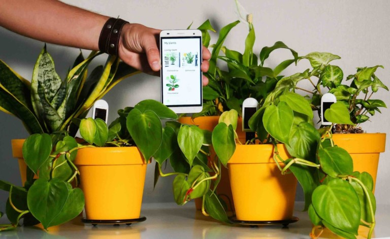 smart home gadgets plant monitor