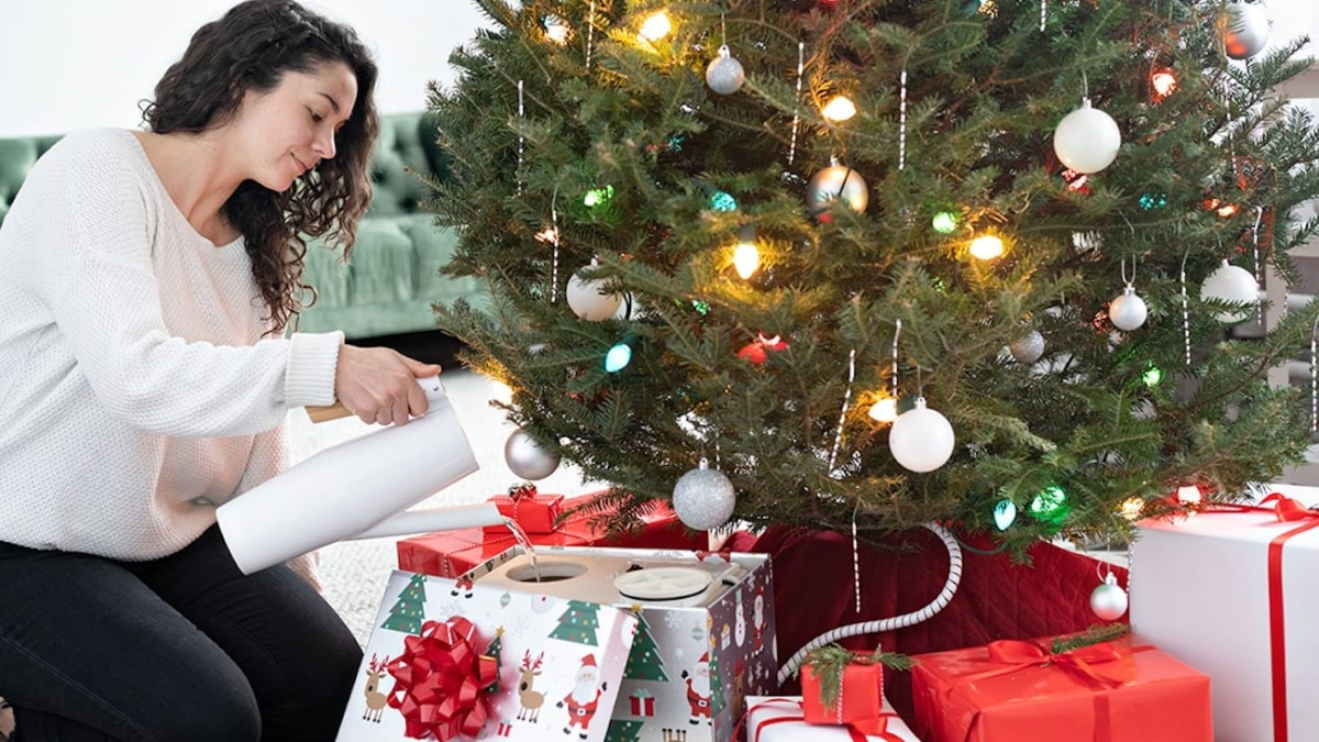 HoHoHoH2o EZ Christmas Tree Watering Device keeps your tree healthy for days in a row