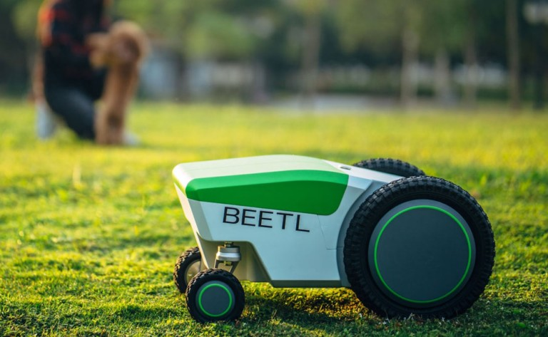 Beetl moving on grass