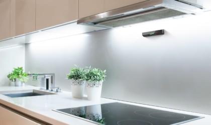 Safera in a kitchen