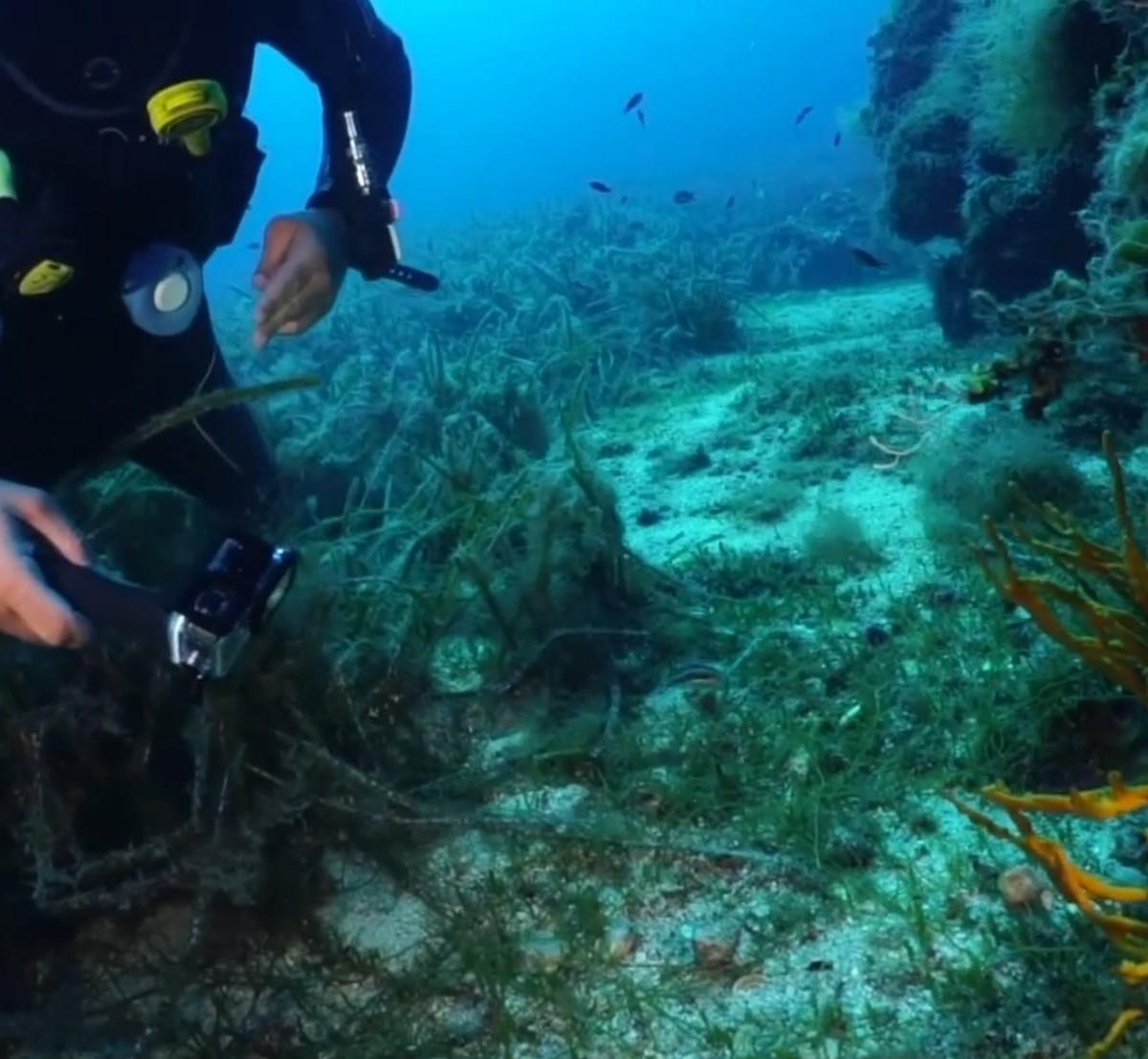 Brizo 3D Dive Logger tracks your dive paths