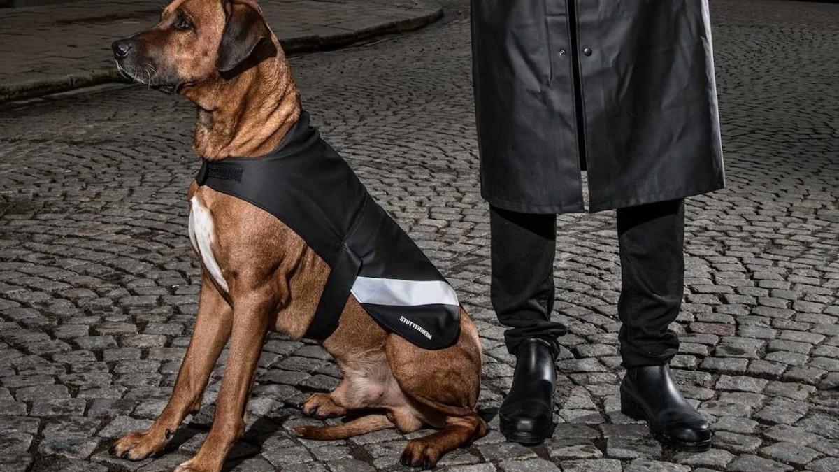 Stutterheim Dog Raincoat Waterproof Jacket keeps your pup protected from the rain