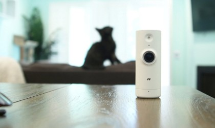 A small video camera is in the foreground on a wood table, with a cat in the background.
