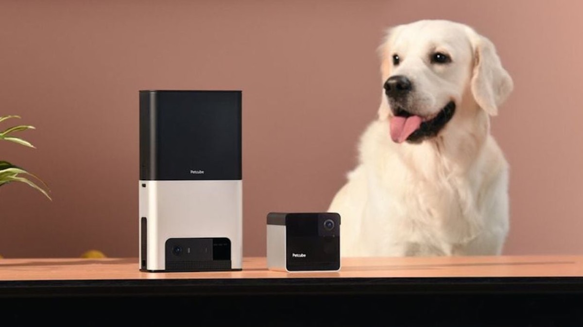 Get your Dr. Doolittle on with these fun pet gadgets
