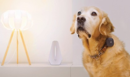 Findster Home Smart GPS Pet Tracker