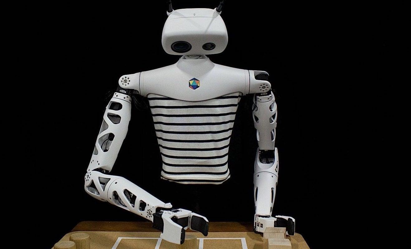 Pollen Robotics Reachy Open-Source Interactive Robot can be built just for your needs