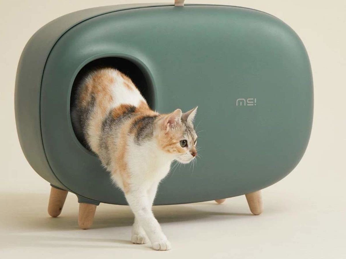 Makesure Modern Cat Litter Box keeps all your kitty's bathroom supplies organized