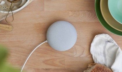 Nest Mini Smart Speaker