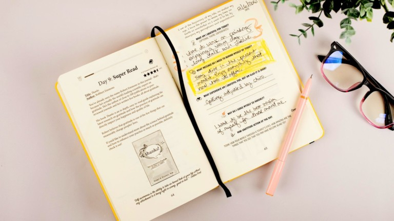 Gratitude Sidekick Journal Guided Appreciation Notebook will help you find beauty in this quarantine