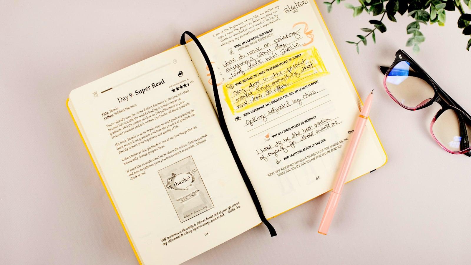 Gratitude Sidekick Journal Guided Appreciation Notebook
