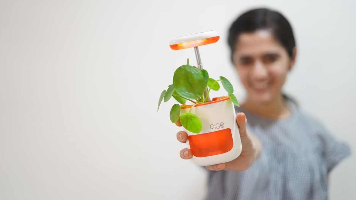 PICO Self-Watering Palm-Sized Garden makes it easier to grow plants indoors
