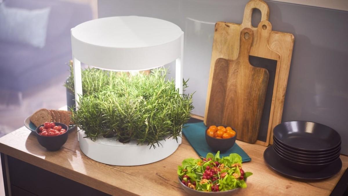 Smart indoor garden gadgets and accessories