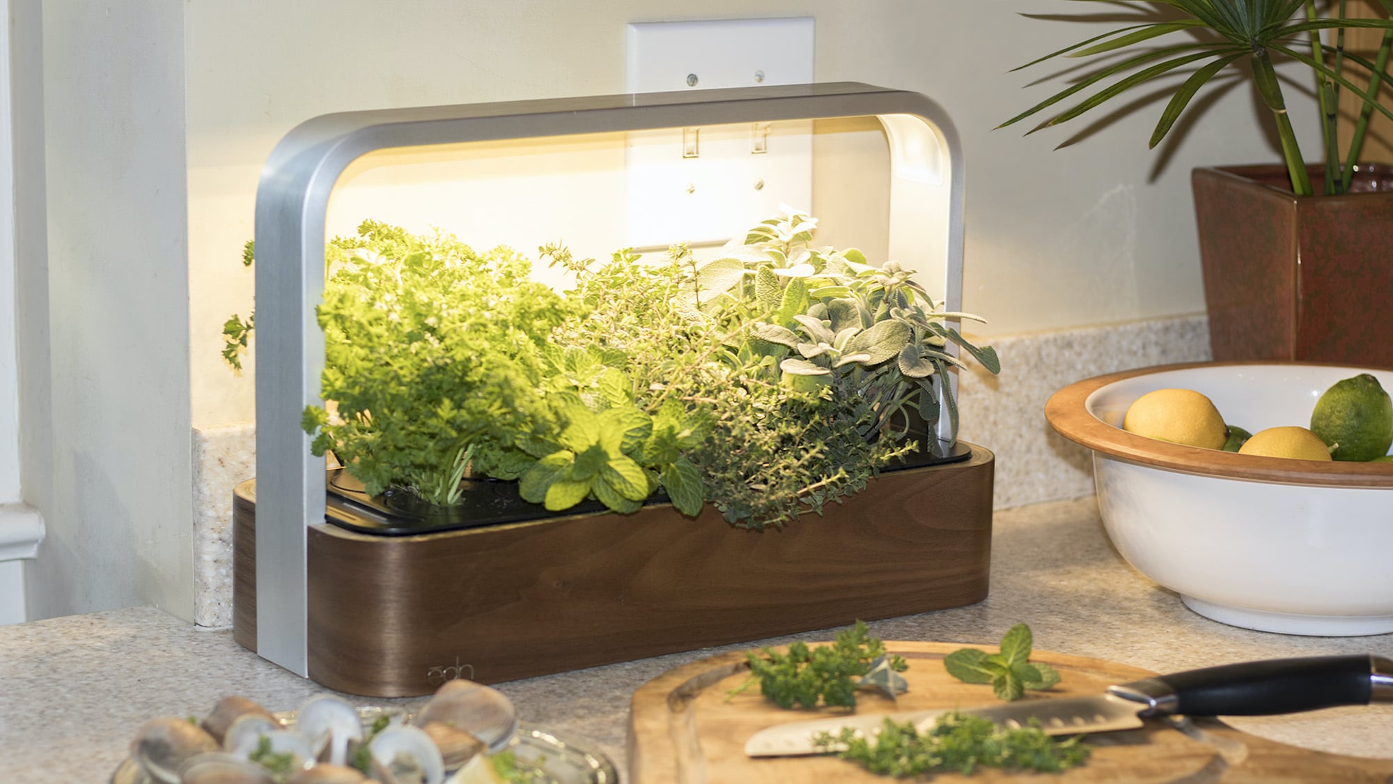ēdn SmallGarden Indoor Connected Garden works over Wi-Fi so you can manage it from anywhere