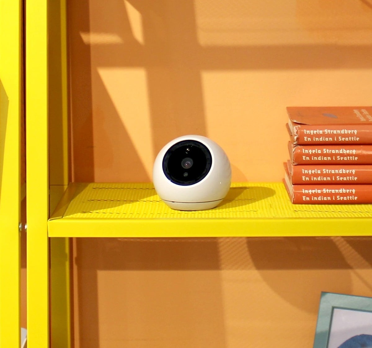 This biometric security camera detects faces and intruders