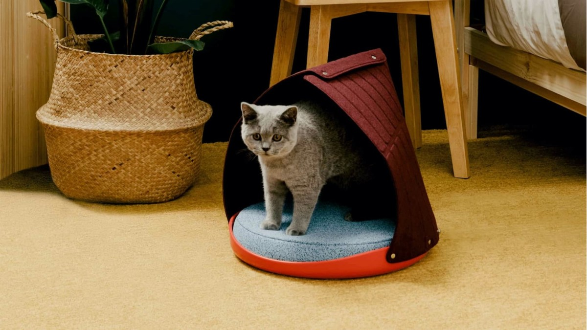 Cat Person Canopy 3-in-1 Feline Bed adjusts depending on how your cat likes it