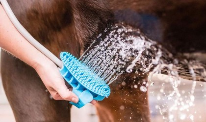 Aquapaw Wearable Pet Bathing Tool