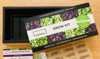 Hamama Microgreens Kit