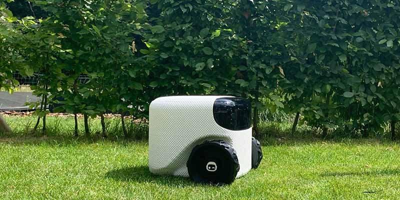 Toadi Autonomous Lawn Robot