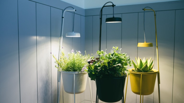 Uplift Planter by Modern Sprout features an elevated plant stand with a full-spectrum grow light