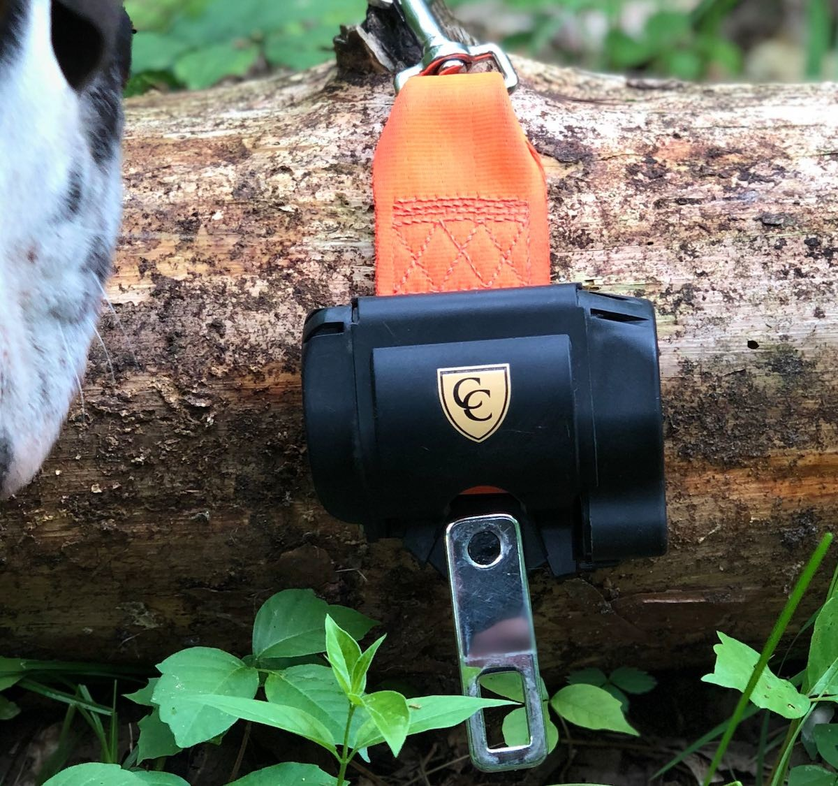 This fully retractable pet seat belt keeps you and Fido safe