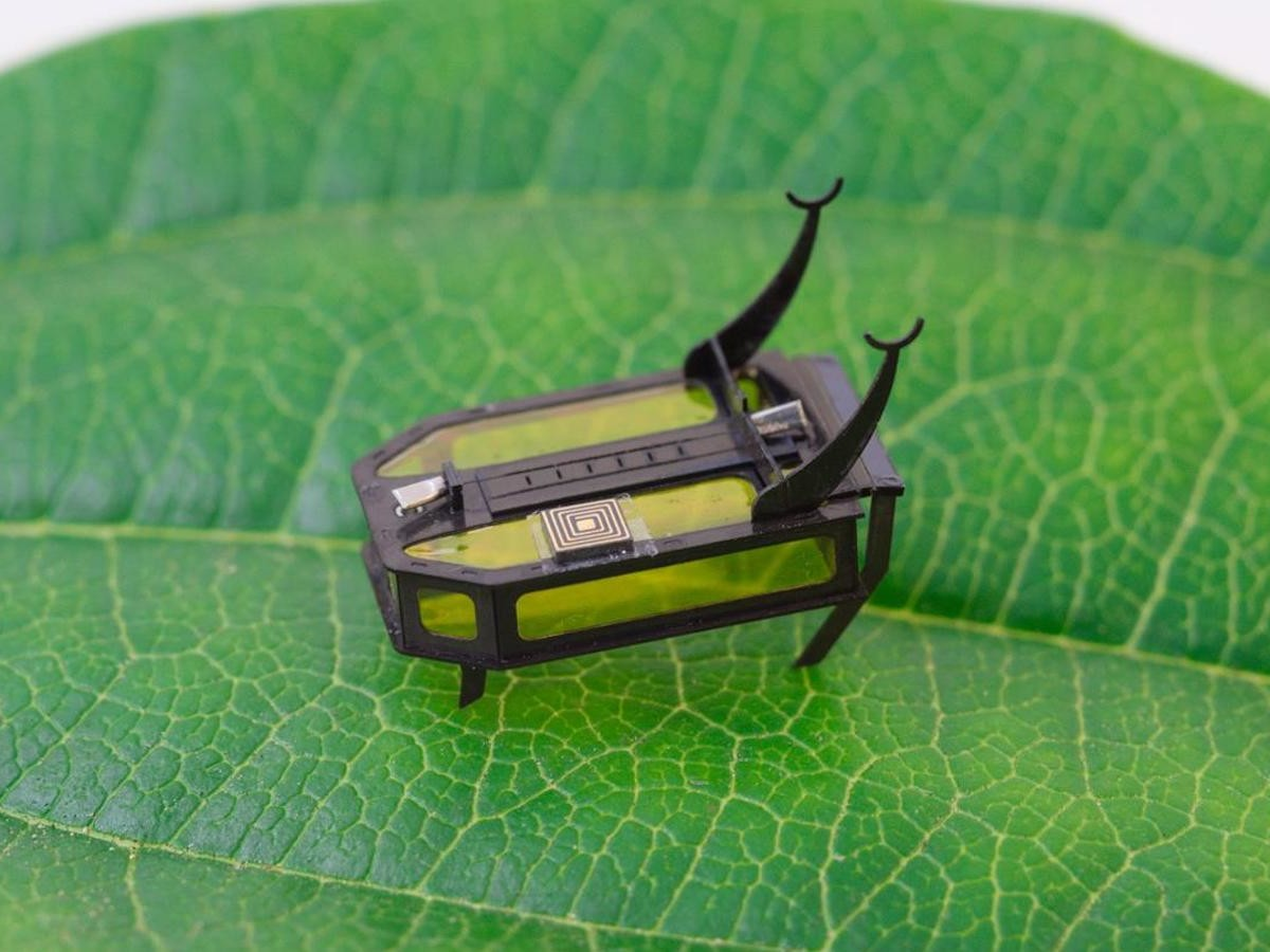 Science Robotics RoBeetle insect-sized microbot runs on methanol