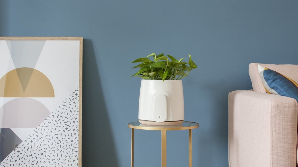 15 Best air purifiers for your home