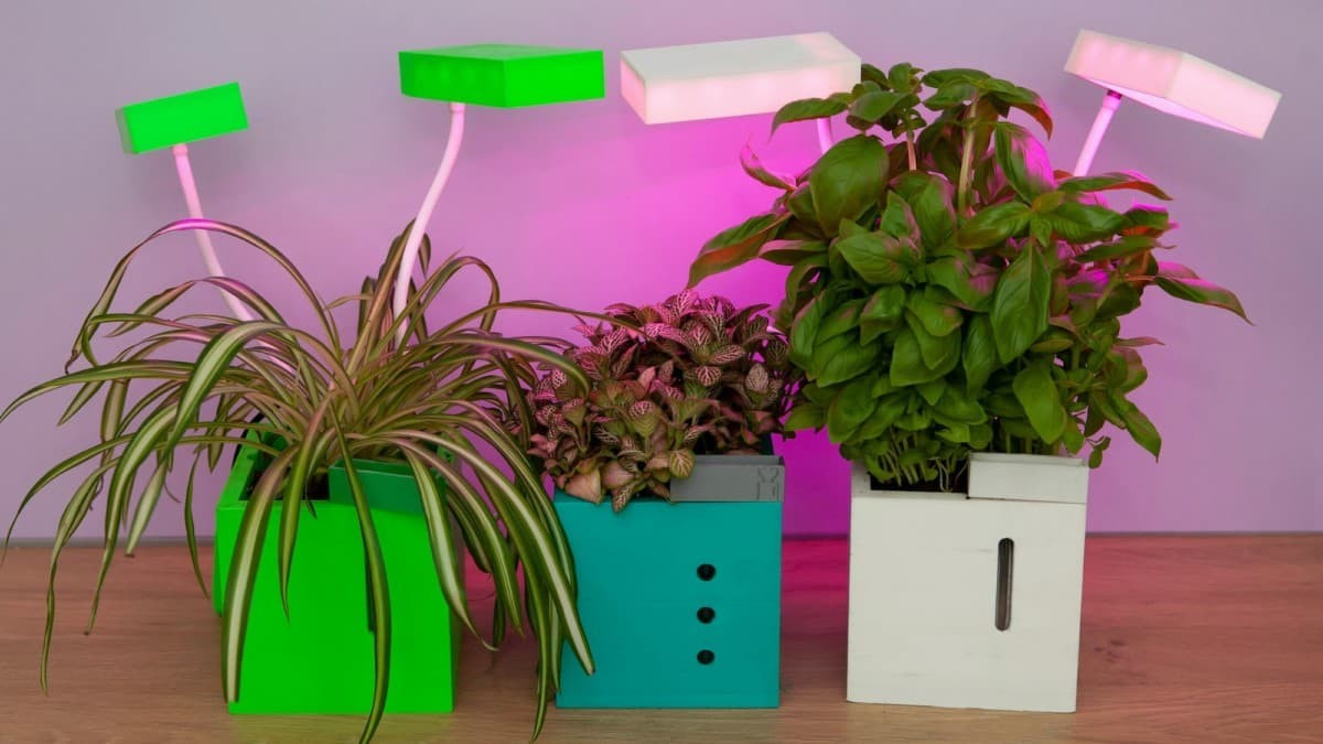 QBUX Urban Farming Gadget