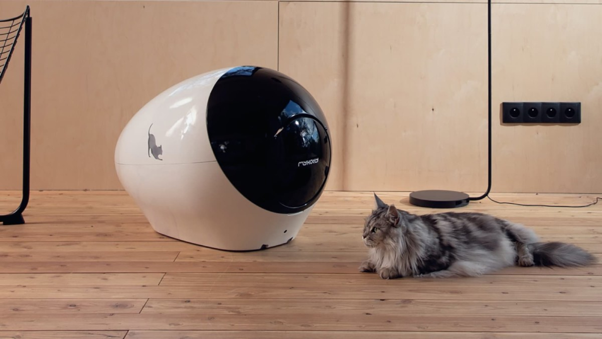 This intelligent litter box is the innovative way to care for your cat