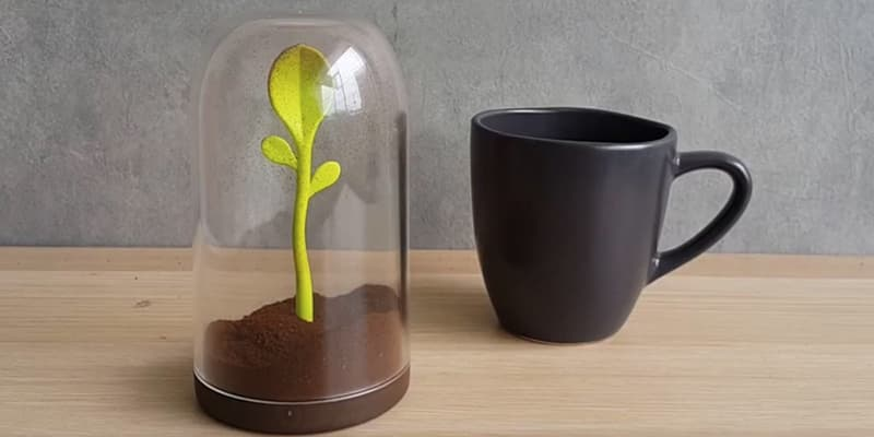 Animi Causa Sprout Jar Seasoning Container