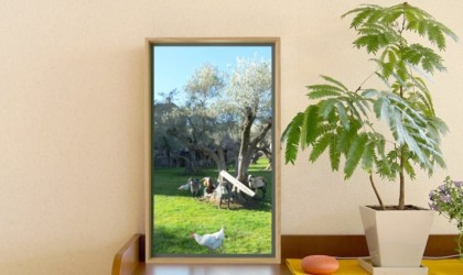Atmoph Window 2 Smart Wall Scenery Display