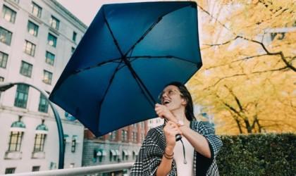 Hedgehog Durable Carbon Fiber Umbrella