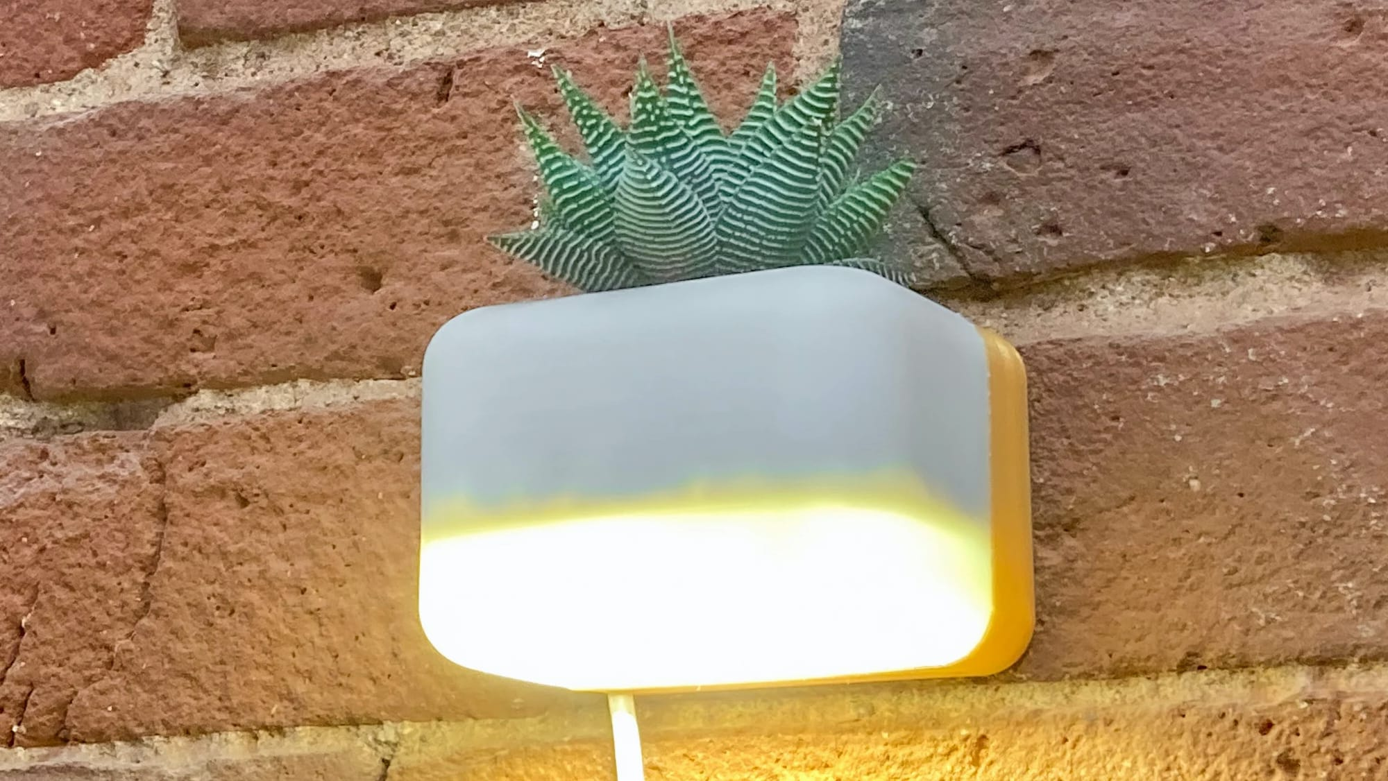 Succulamp succulent sconce combines lighting and greenery