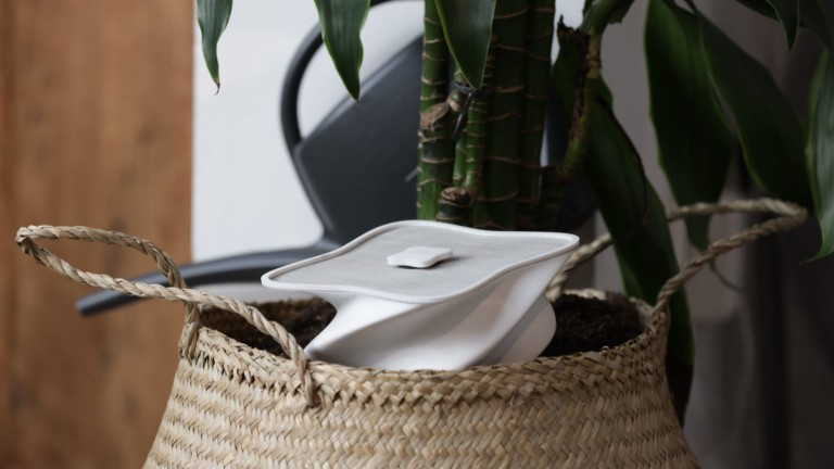 hûs+ flower plant babysitter connects with an app and actually waters your plants