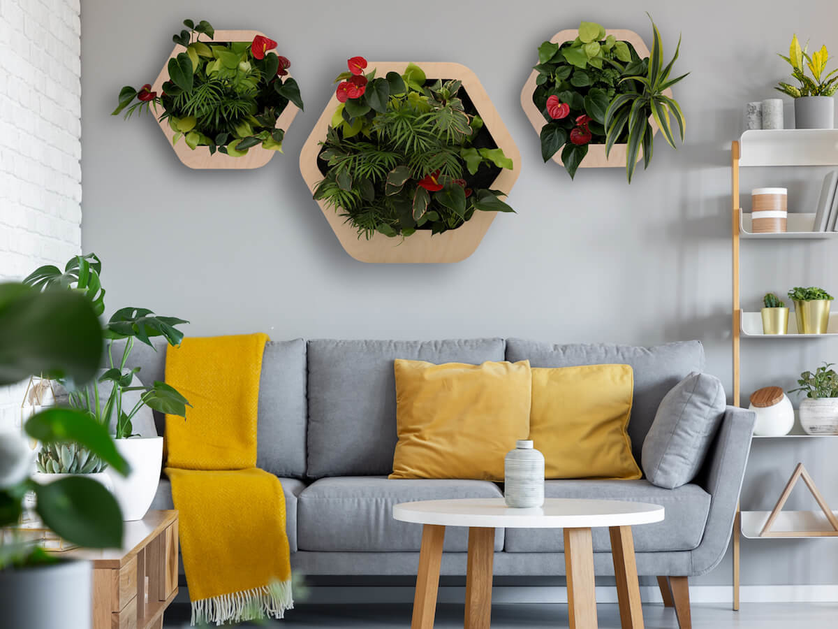 Gromeo mini garden wall system brings the outdoors to your home or office