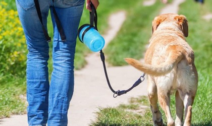 Lesotc Dog Water Bottle portable pet bowl