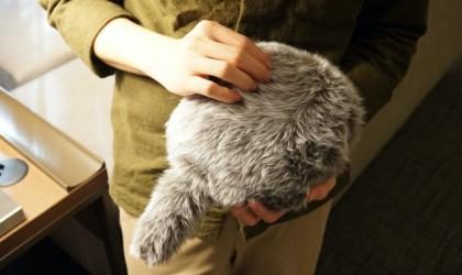 Petit Qoobo Tailed Cushion Robot