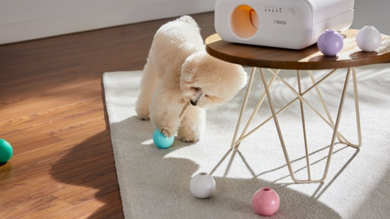 TREATOI smart automatic treat ball