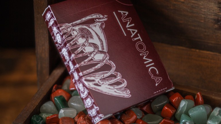Anatomica Playing Cards premium deck features diverse court cards from worldwide cultures