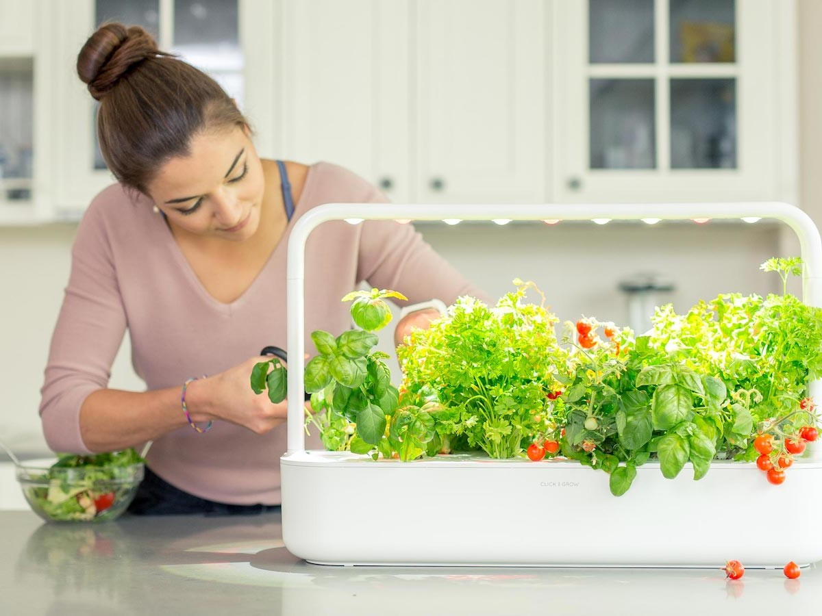 Click & Grow Smart Garden 9 PRO is an app-controlled, self-growing indoor garden