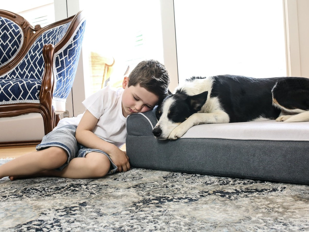 Dog Cloud Bed therapeutic pet bed relieves discomfort from arthritis and joint pain