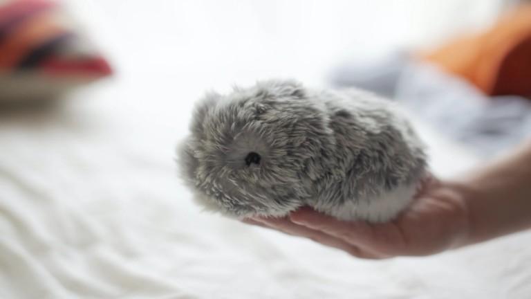 MOFLIN AI Pet