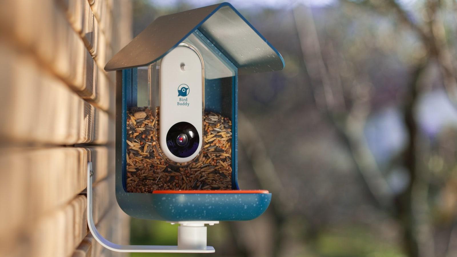 Bird Buddy smart bird feeder captures photos of feathered visitors