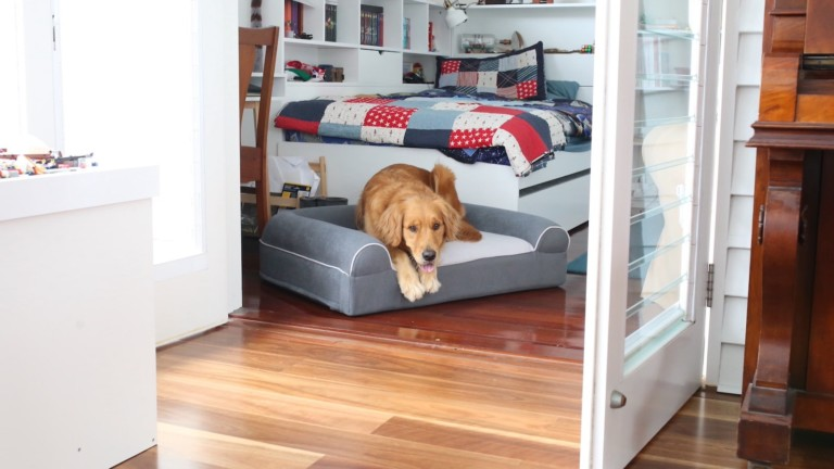 Dog Cloud Bed therapeutic pet bed