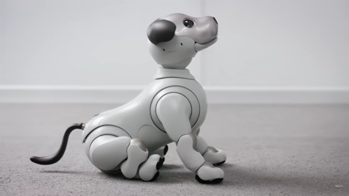 Top 5 robots you can buy for your home today