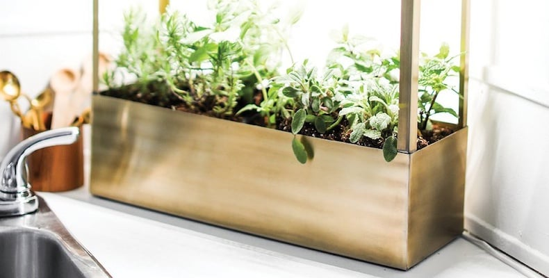 Modern Sprout Grow-Anywhere Growhouse