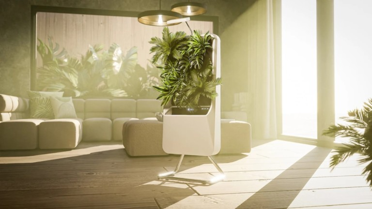 This air-purifying garden filters the air in a natural way