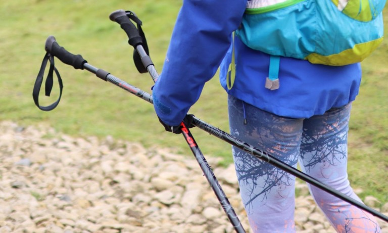 This adjustable alpine pole is what you need for your mountain treks
